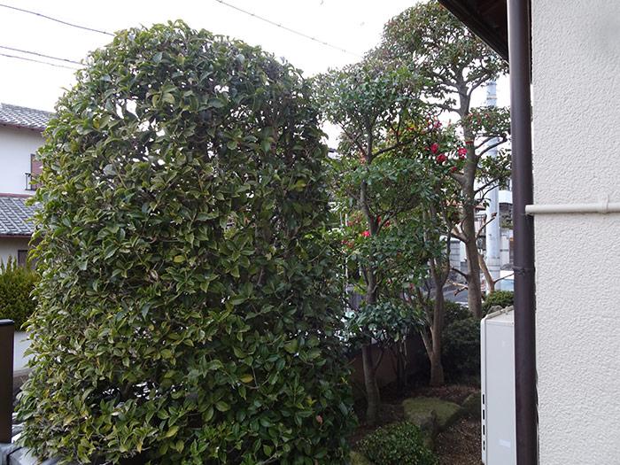 神戸市垂水区 K様邸 のアフター画像4