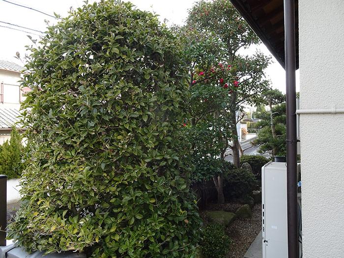 神戸市垂水区 K様邸 のビフォー画像4