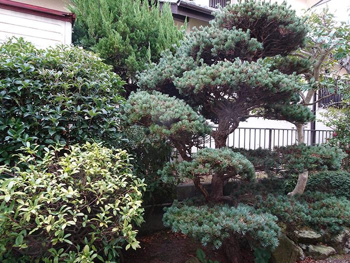 神戸市垂水区 K様邸 のビフォー画像9