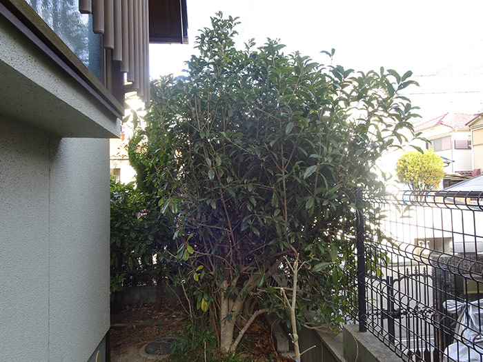 神戸市垂水区 F様邸 のビフォー画像4
