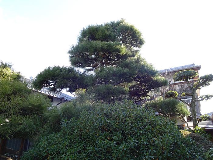 三木市 M様邸 のビフォー画像8