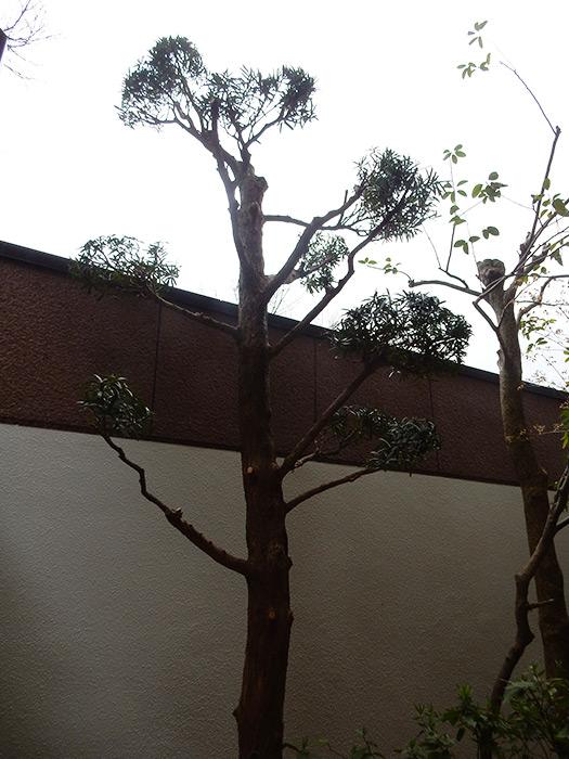 神戸市須磨区 K様邸 のアフター画像1