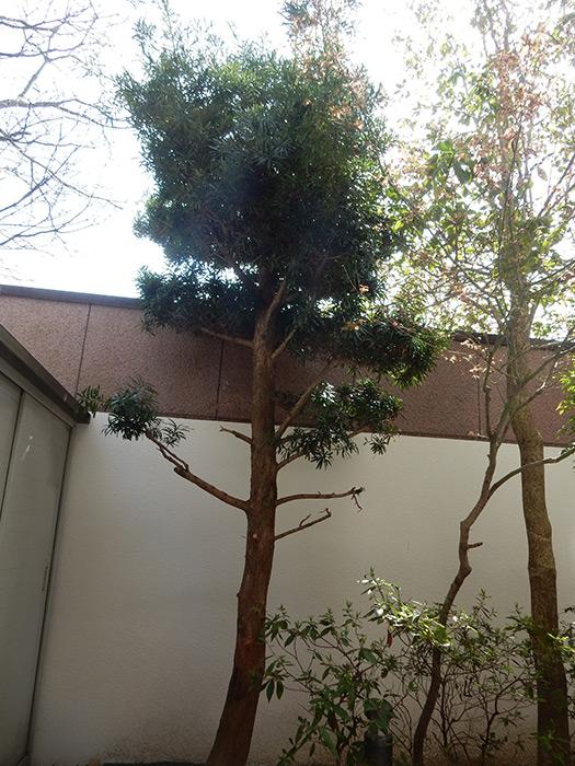 神戸市須磨区 K様邸 のビフォー画像1