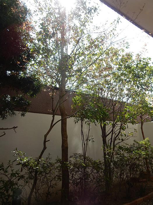 神戸市須磨区 K様邸 のビフォー画像2