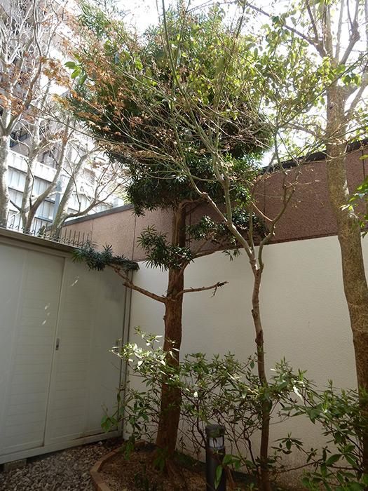 神戸市須磨区 K様邸 のビフォー画像3