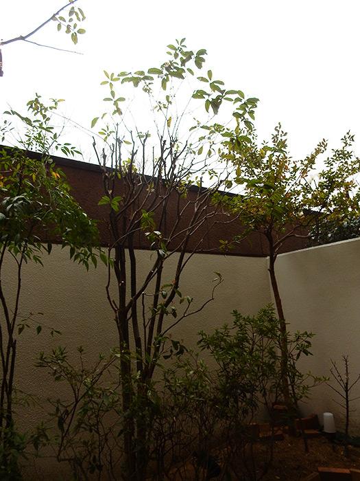 神戸市須磨区 K様邸 のアフター画像4