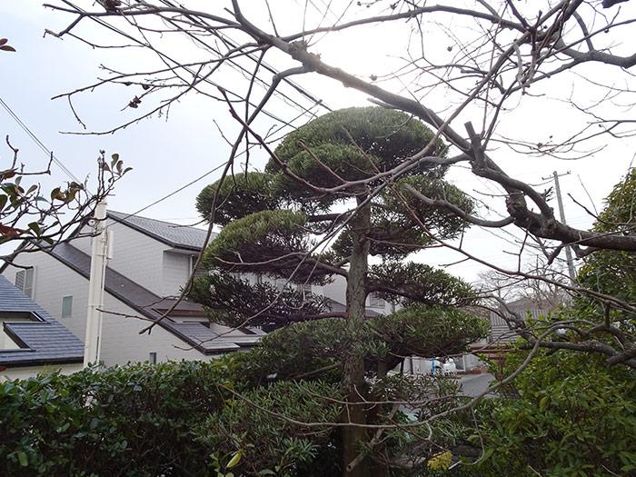 神戸市西区 F様邸 のアフター画像3