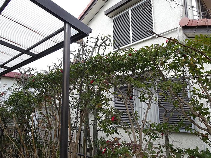 神戸市西区 F様邸 のアフター画像6