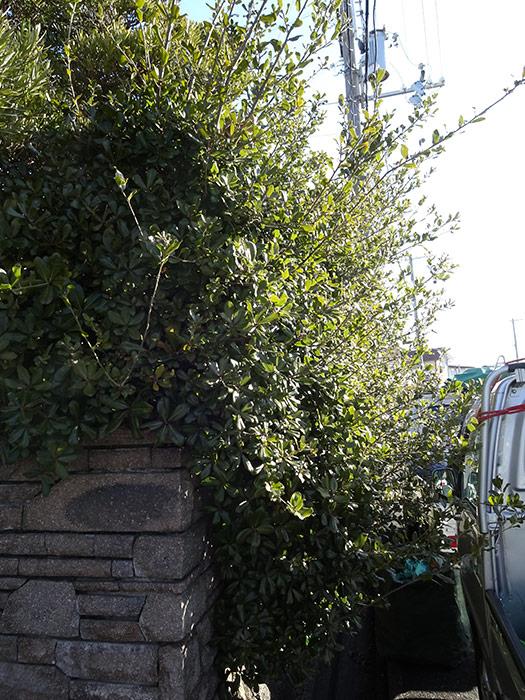神戸市西区 F様邸 のビフォー画像7