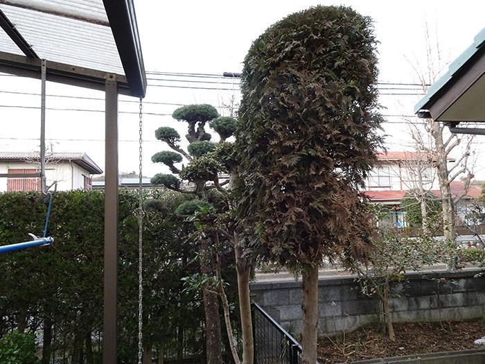 神戸市垂水区 N様邸 のアフター画像5