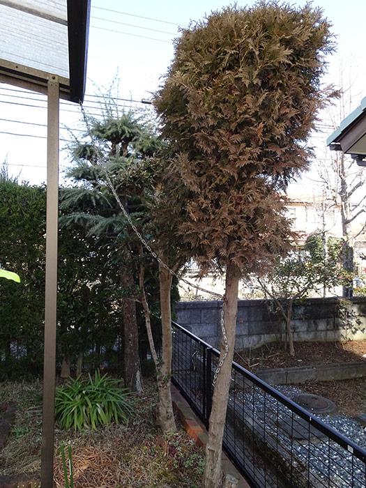 神戸市垂水区 N様邸 のビフォー画像5
