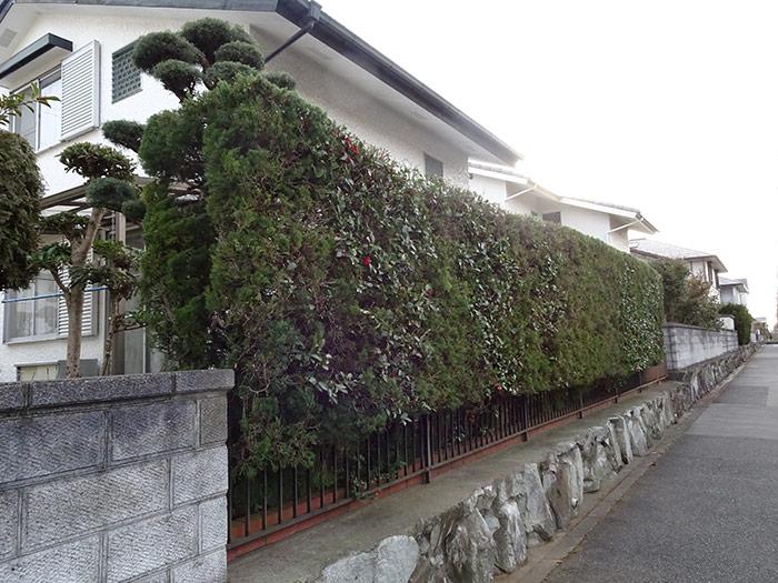 神戸市垂水区 N様邸 のアフター画像6