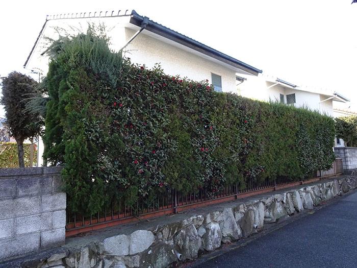 神戸市垂水区 N様邸 のビフォー画像6