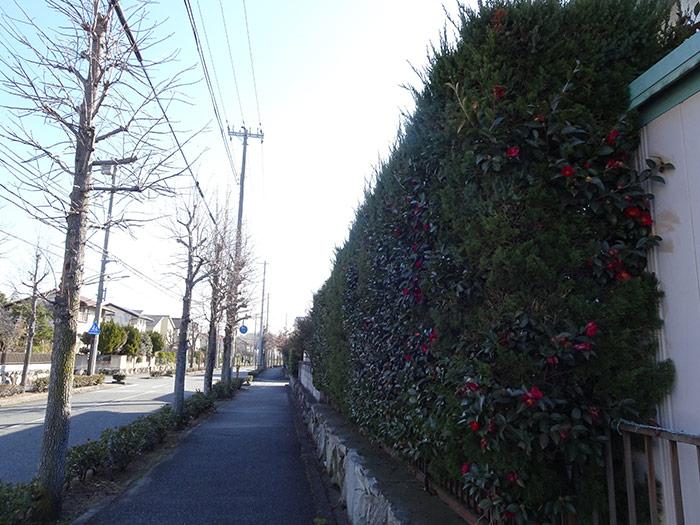神戸市垂水区 N様邸 のビフォー画像7