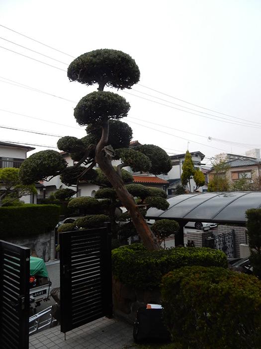 神戸市垂水区 N様邸 のアフター画像1