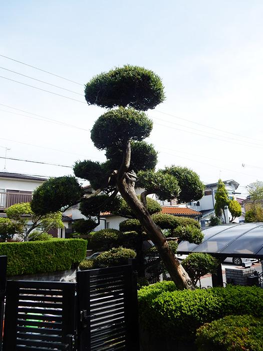 神戸市垂水区 N様邸 のビフォー画像1