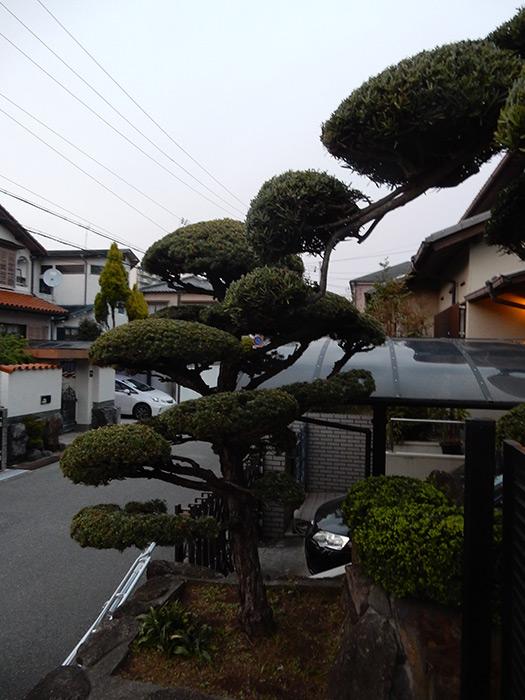 神戸市垂水区 N様邸 のアフター画像2