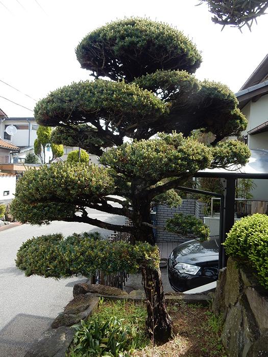 神戸市垂水区 N様邸 のビフォー画像2
