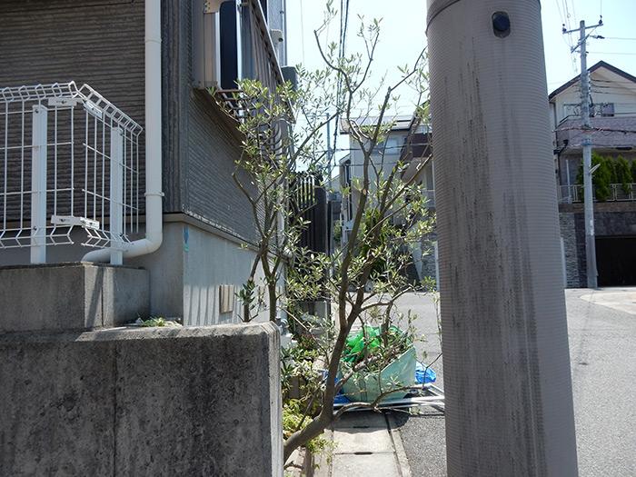 神戸市垂水区 M様邸 のアフター画像3