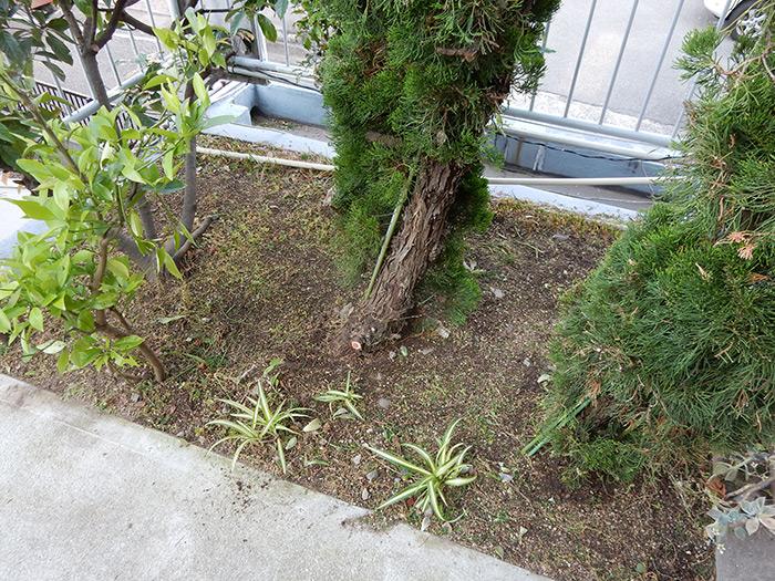 神戸市垂水区 O様邸 のアフター画像2
