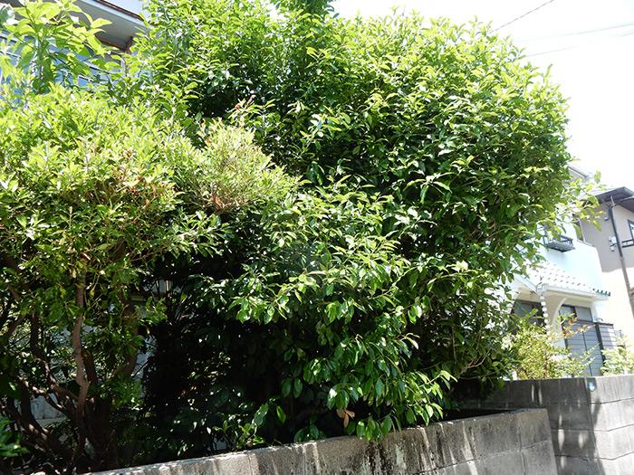 神戸市垂水区 O様邸 のビフォー画像2