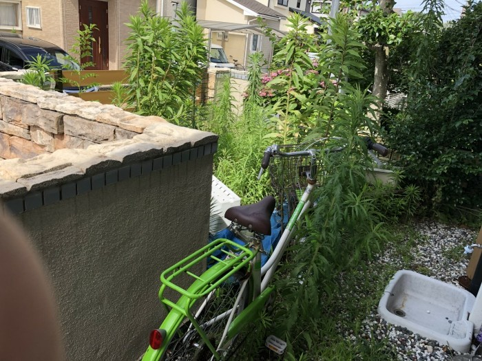 神戸市西区N様邸 除草作業 のビフォー画像2