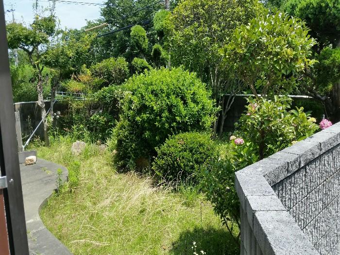 神戸市垂水区K様邸 お庭のお手入れ のビフォー画像1