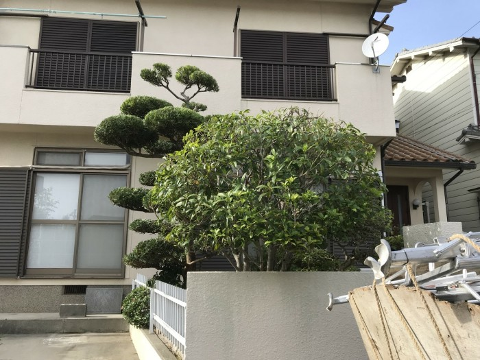 神戸市垂水区D様邸 お庭のお手入れ のアフター画像3