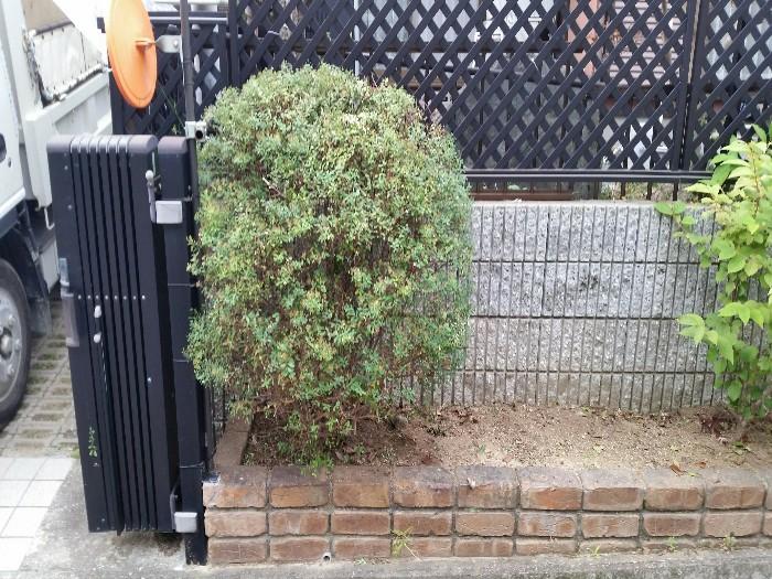 神戸市北区S様邸 お庭のお手入れ のアフター画像2