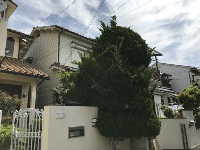 神戸市垂水区D様邸 お庭のお手入れ のビフォー画像4