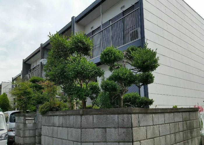 神戸市須磨区K様邸 お庭のお手入れ のビフォー画像1