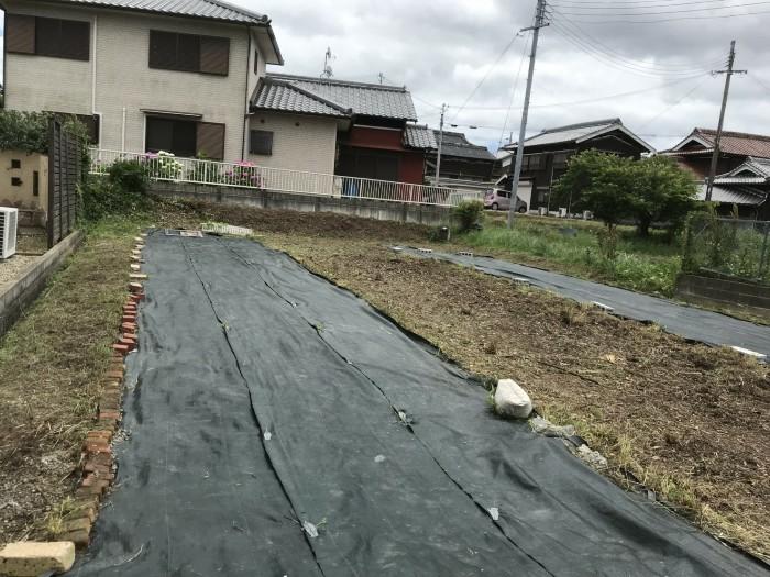 神戸市西区 T様邸 生垣刈込 のアフター画像2