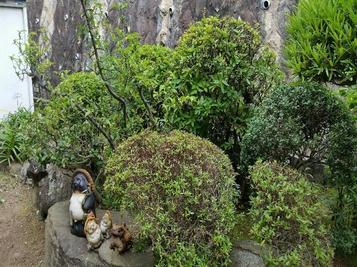 神戸市垂水区T様邸 お庭のお手入れ のアフター画像2