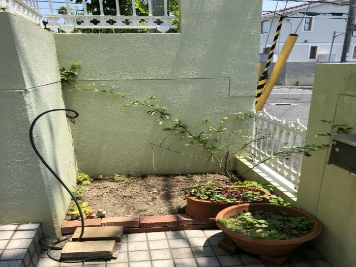 神戸市西区H様邸 伐採他作業 のアフター画像3