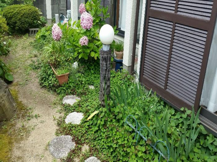 神戸市垂水区T様邸 お庭のお手入れ のビフォー画像3