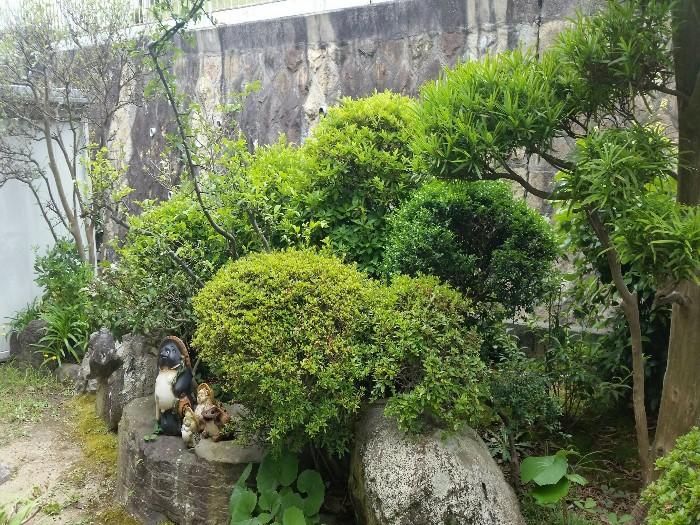 神戸市垂水区T様邸 お庭のお手入れ のビフォー画像2