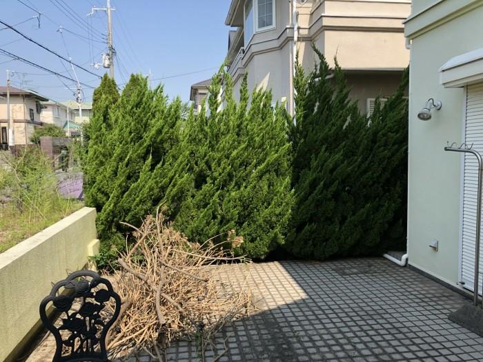 神戸市西区H様邸 伐採他作業 のビフォー画像1