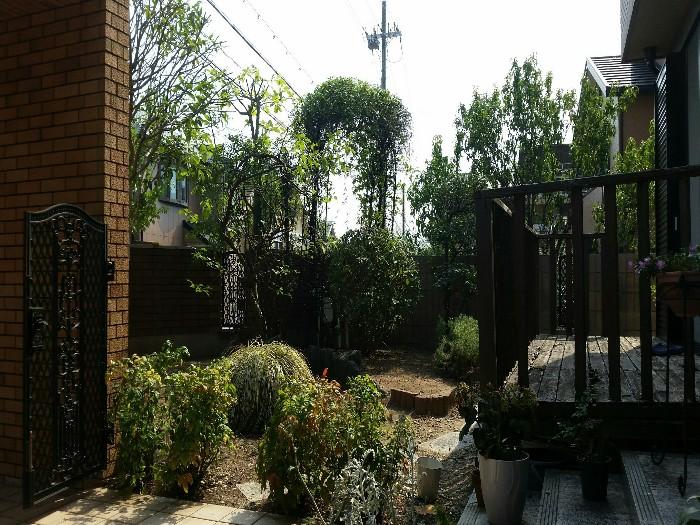 神戸市西区 N様邸お庭のお手入れ のアフター画像2