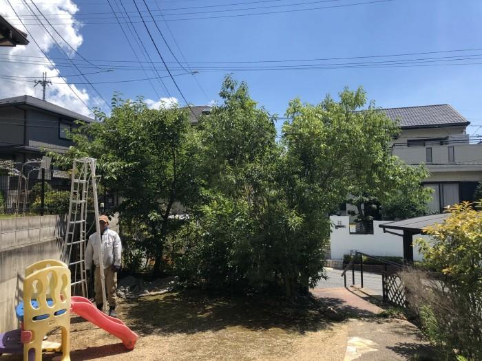 神戸市北区K様邸お庭のお手入れ のビフォー画像2