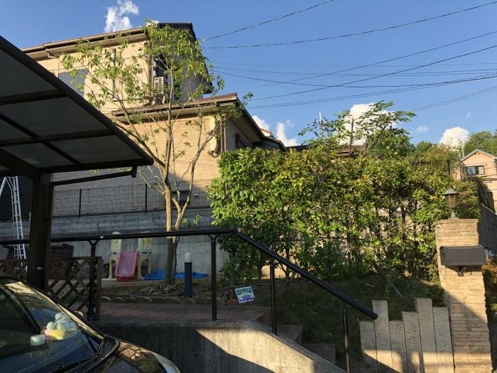 神戸市北区K様邸お庭のお手入れ のアフター画像1