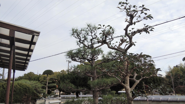 神戸市 垂水区 N様邸 のアフター画像4