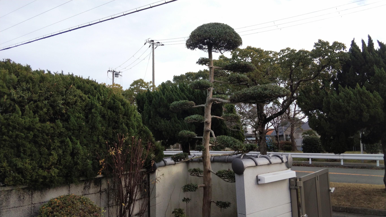 神戸市 垂水区 N様邸 のアフター画像5