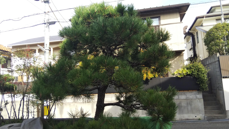 神戸市須磨区 O様邸 のビフォー画像2