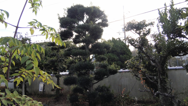 神戸市 垂水区 N様邸 のビフォー画像2