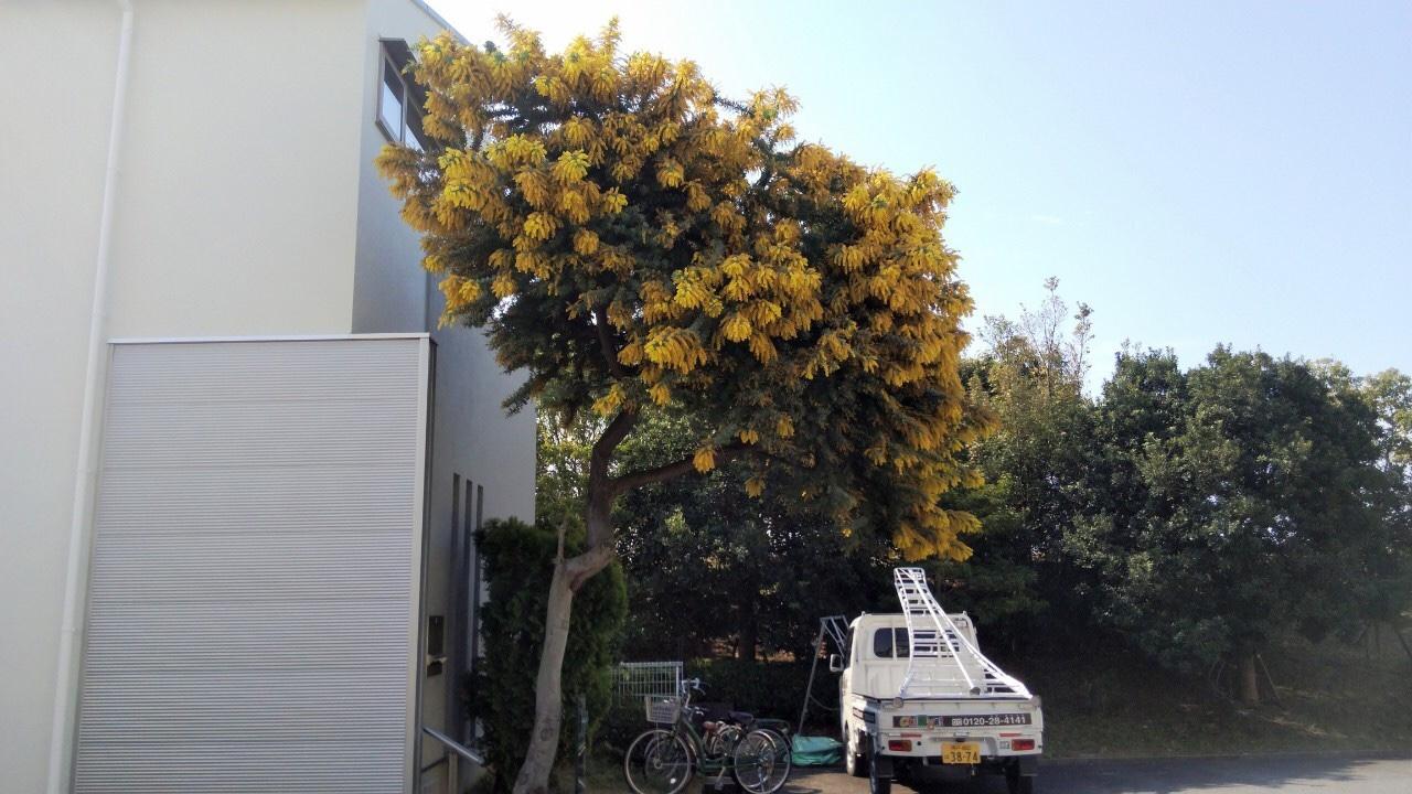 神戸市西区 F様邸 のビフォー画像2