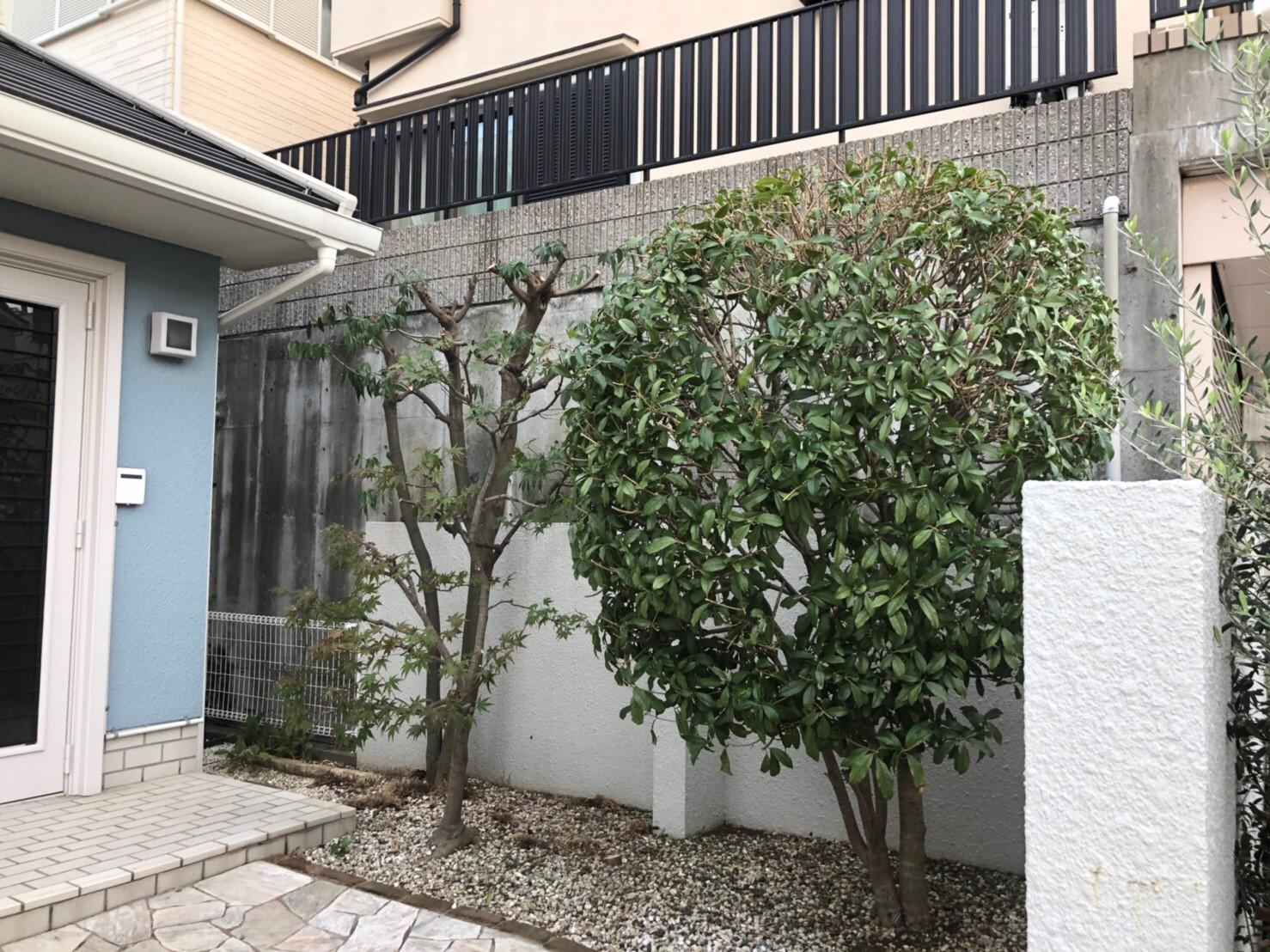 神戸市 A様邸 のアフター画像1