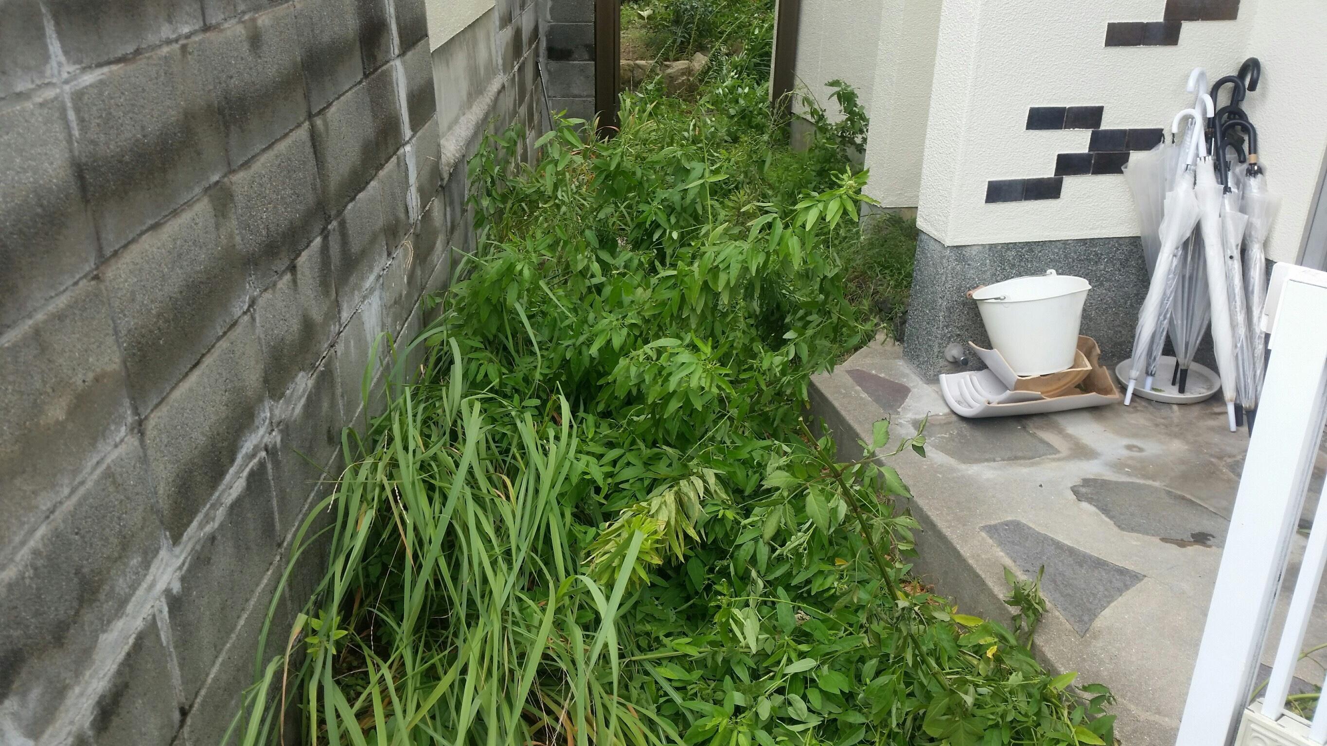 神戸市K様邸 のビフォー画像2