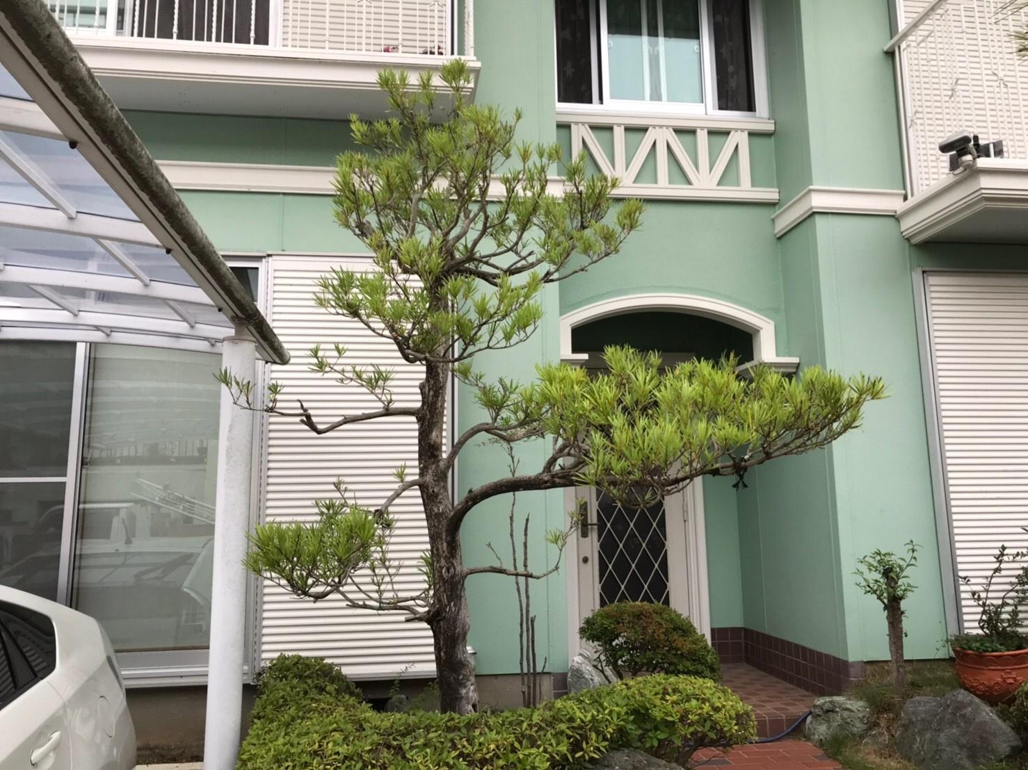 神戸市 M様邸 のアフター画像2