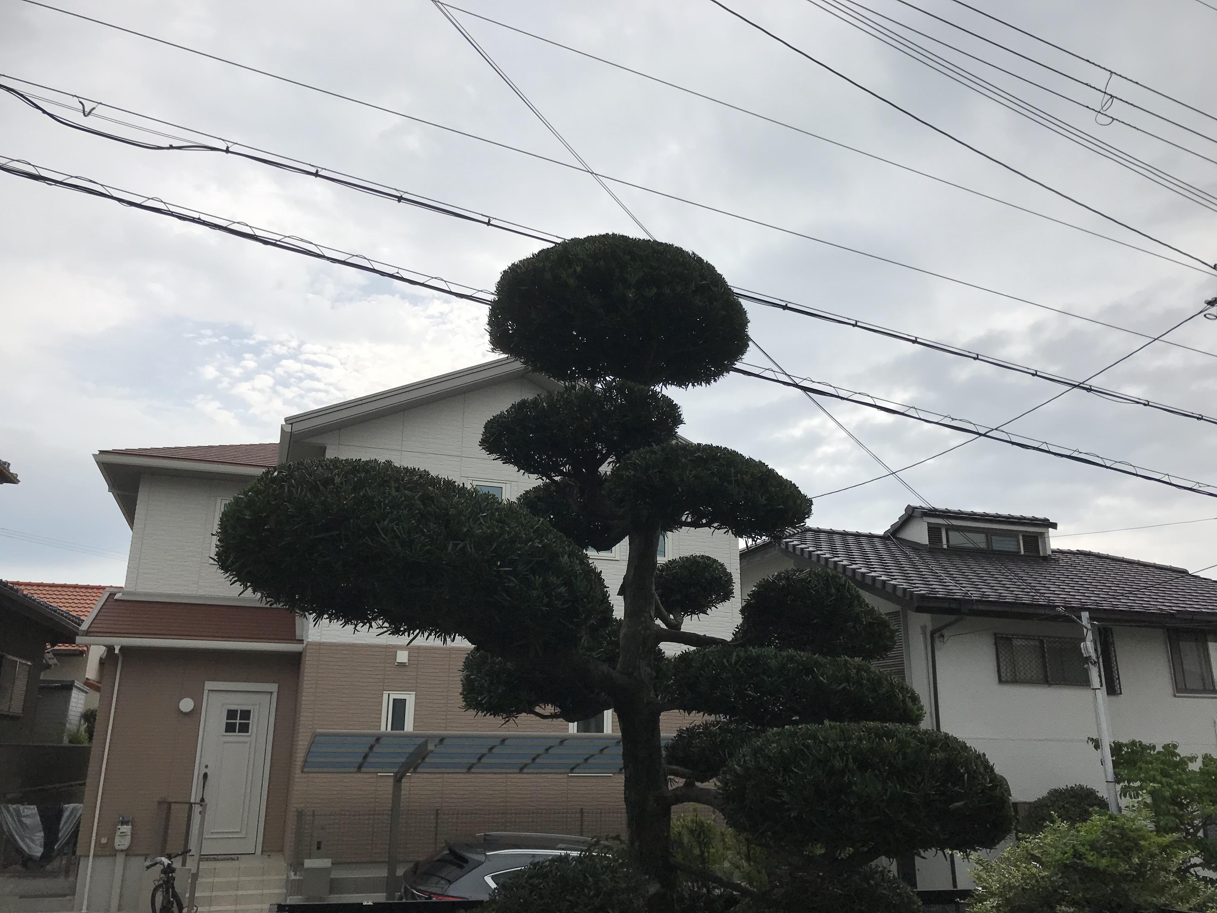 神戸市 S様邸 のアフター画像1