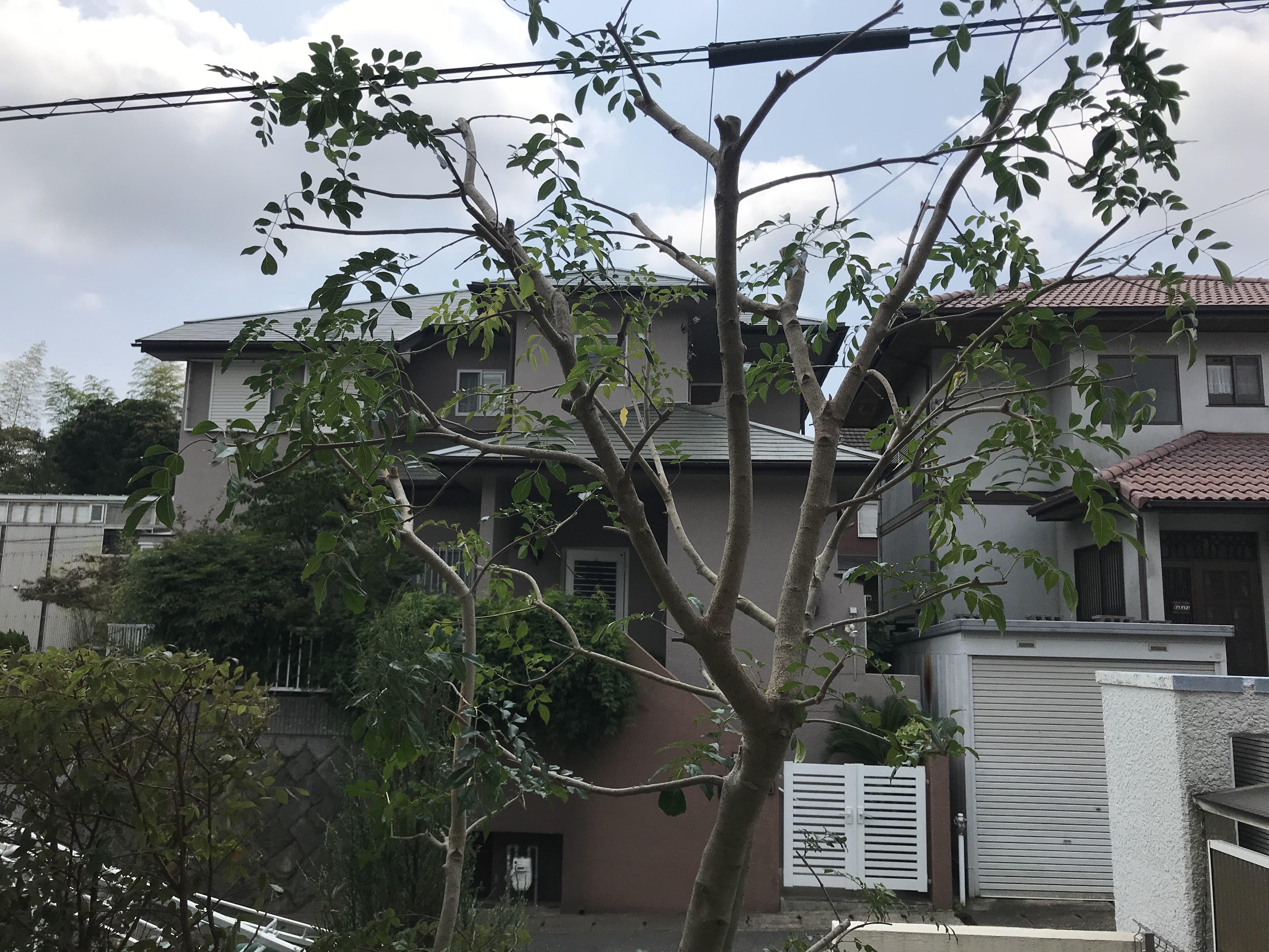 神戸市 Y様邸 のアフター画像2